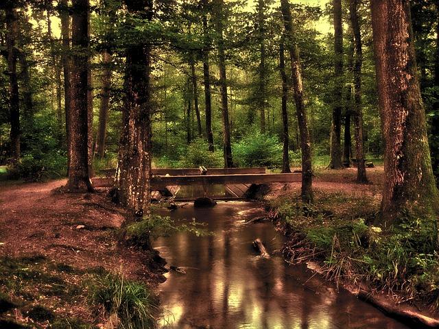 investir dans les terres rares